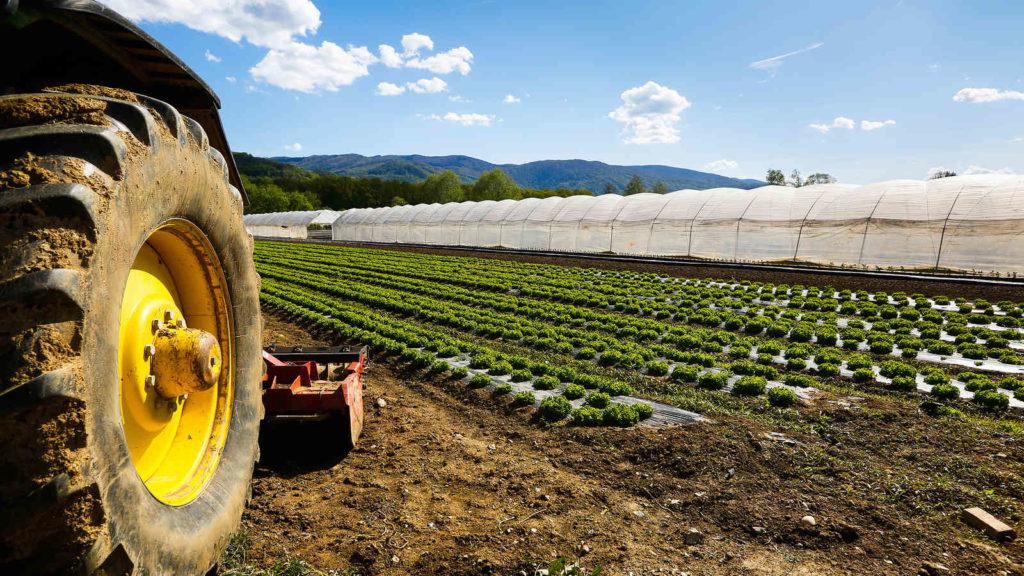 CCNL per i dipendenti di cooperative e consorzi agricoli (2020-2023)