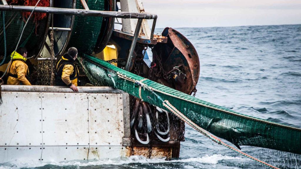 CCNL per gli imbarcati su natanti di cooperative di pesca 2017-2020