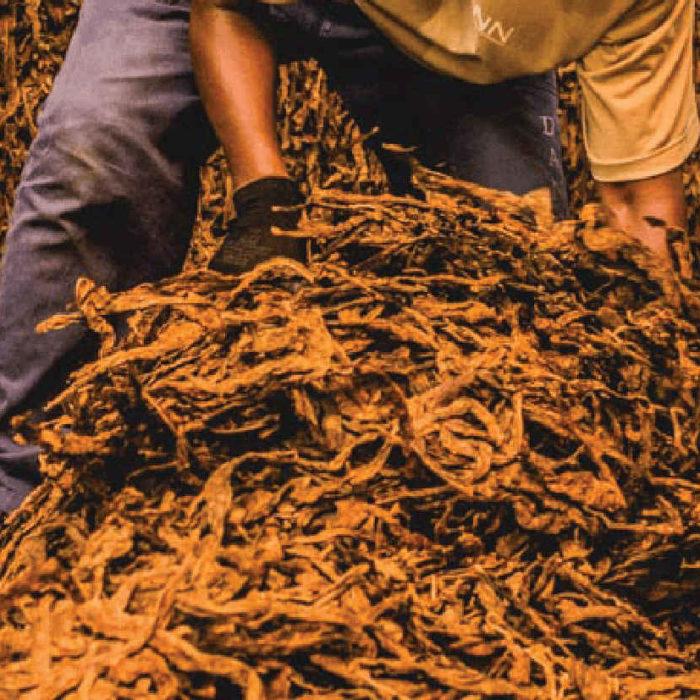 CCNL per i dipendenti dalle Aziende di lavorazione della foglia di tabacco secco allo stato sciolto (2017-2020)