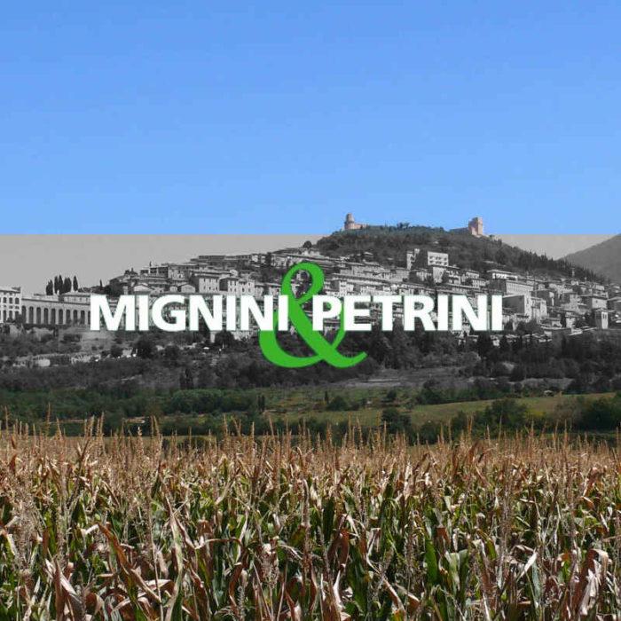 MIGNINI & PETRINI (2018-2021)